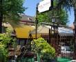 Restoran Stara Sent Andrea, restorani Beograd, sveza recna riba