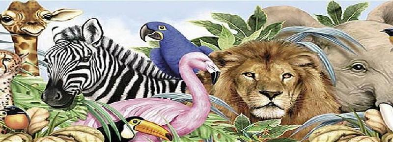zanimljivosti-o-zivotinjama-cover