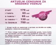 Pink taxi, auto prevoznici Beograd, gradska voznja cene
