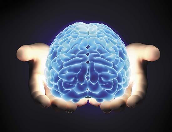zanimljivosti-o-mozgu-2