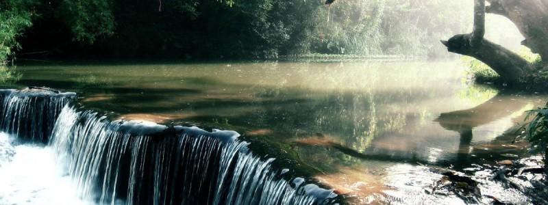 Amazon reka